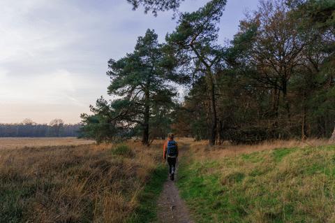 Nivon lanceert unieke hike & night trektochten om compleet offline in de Nederlandse natuur te zijn